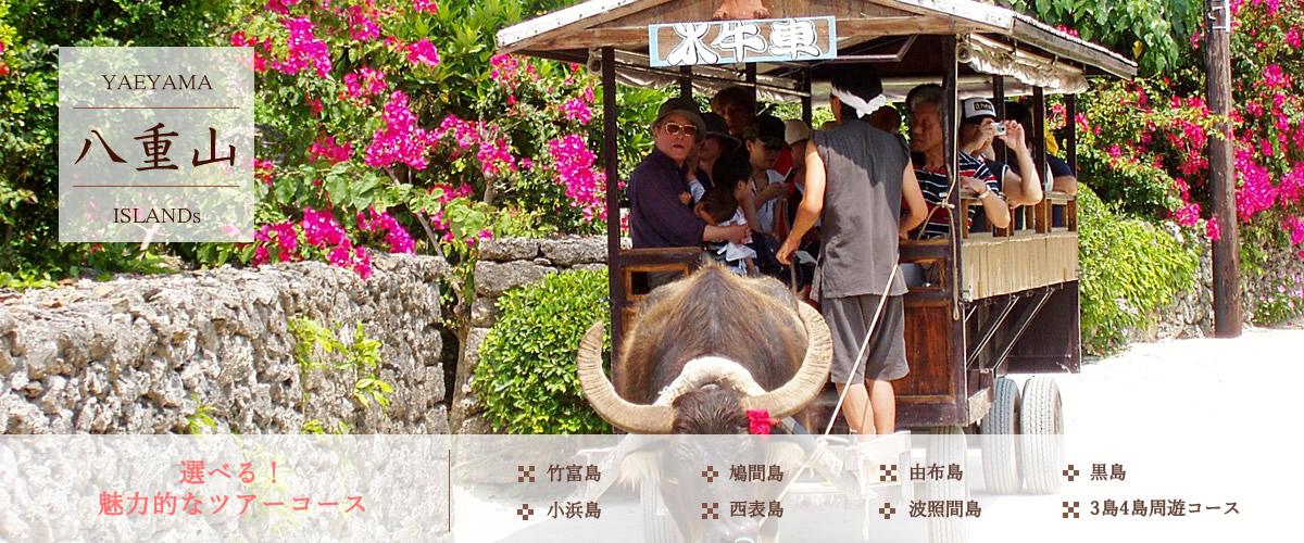 竹富島観光ツアー
