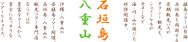 石垣島・八重山離島観光ツアー専門店