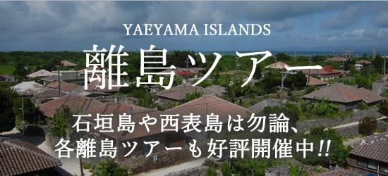 石垣島・八重山の各離島観光ツアー
