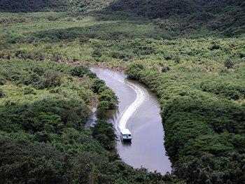西表島仲間川と由布島ツアー