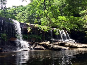 西表島カヌー&トレッキング サンガラの滝ツアー