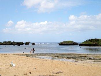 西表島仲間川、由布島と星砂の浜ツアー